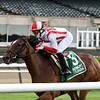 Newspaperofrecord wins the 2020 Intercontinental Stakes at Belmont Park<br /> Coglianese Photos/Chelsea Durand