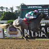 Tacitus wins the 2020 Suburban Stakes at Belmont Park<br /> Coglianese Photos/Susie Raisher