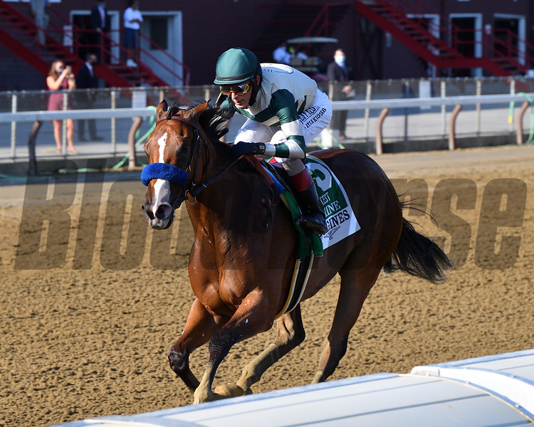Gamine wins the 2020 Test Stakes at Saratoga<br /> Coglianese Photos/Chelsea Durand