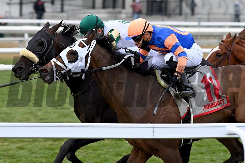 City Man wins the 2020 Gio Ponti Stakes at Aqueduct.<br /> Coglianese Photos/Joe Labozzetta