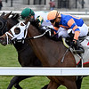 City Man wins the 2020 Gio Ponti Stakes at Aqueduct.<br /> Coglianese Photos/Joe Labozzetta