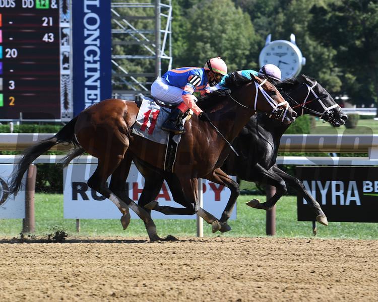 Nautilus wins maiden special weight Saturday, August 22, 2020 at Saratoga Race Course. Photo: Coglianse Photos