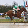 Posse Can Disco - Maiden Win, Aqueduct, December 5, 2020<br /> Coglianese Photos