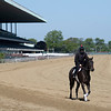 "A horse trained by Claude R. ""Shug' McGaughey III jogs on the main track at Belmont Park Wednesday, May 20, 2020 in Elmont, N.Y. with the exercise rider using a face mask in compliance with the safety protocols at the New York tracks. Photo by Skip Dickstein"