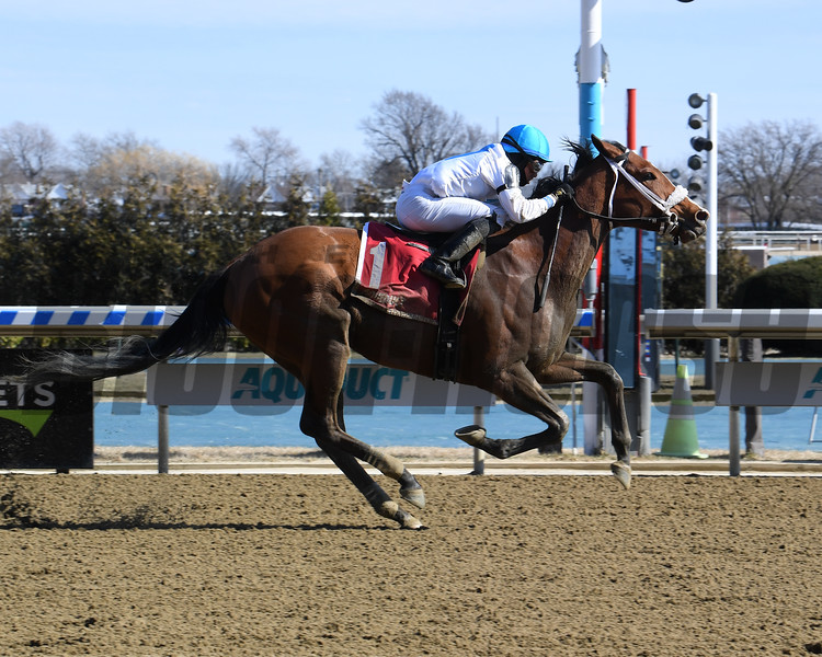 Crimson Frost and jockey Manuel Franco win the Heavenly Prize Invitational Stakes March, 8, 2020 at Aqueduct Racetrack. Photo: Coglianese Photos/Susie Raisher