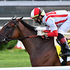 Newspaperofrecord wins the 2020 Just a Game Stakes at Belmont Park<br /> Coglianese Photos/Joe Labozzetta