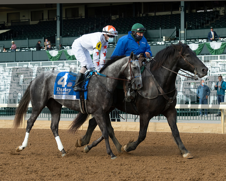 Crazy Beautiful before the Darley Alcibiades (G1) at Keeneland.<br /> Opening day of the Keeneland fall meeting on October 2, 2020.