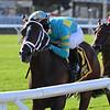 Fire At Will wins the 2020 Pilgrim Stakes at Belmont Park<br /> Coglianese Photos/Joe Labozzetta