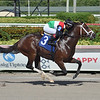 Tatweej - AOC, Gulfstream Park, August 22, 2020<br /> Coglianese Photos/Lauren King
