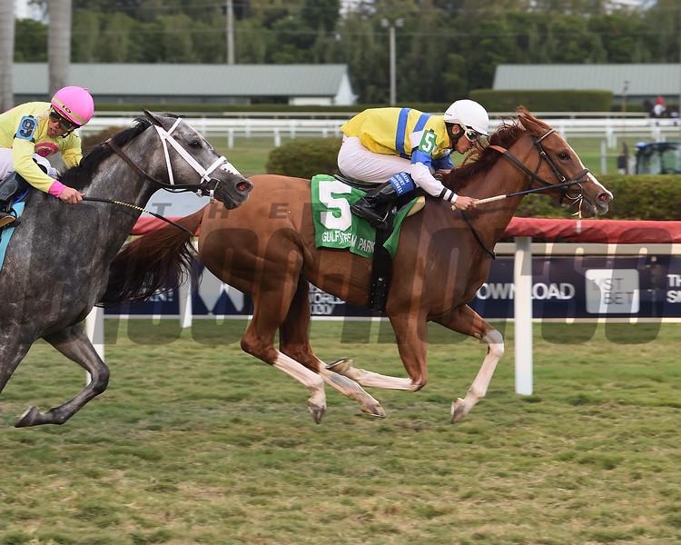 Girls Know Best wins the 2020 Captiva Island Stakes at Gulfstream Park<br /> Coglianese Photos/Lauren King