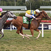 Girls Know Best wins the 2020 Captiva Island Stakes at Gulfstream Park<br /> Coglianese Photos/Lauren King
