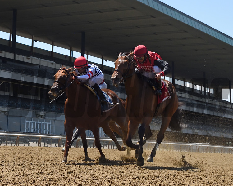 Frank's Rockette wins the 2020 Victory Ride at Belmont Park<br /> Coglianese Photos/Chelsea Durand