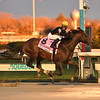 True Timber wins the 2020 Cigar Mile at Aqueduct<br /> Coglianese Photos
