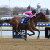 Tonal Vision wins maiden special weight Sunday, March 8, 2020 at Aqueduct. Photo: Coglianese Photos