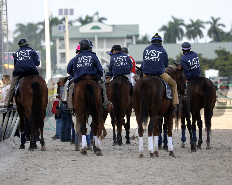 Safety 1st initiative at Gulfstream Park. Photo: Photos by Z
