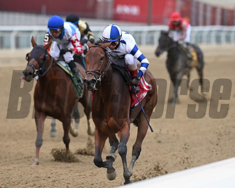 Espresso Shot wins the New York Stallion Series Stakes Sunday, November 22, 2020 at Aqueduct. Photo: Coglianese Photos/Joe Labozzetta