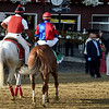 Swiss Skydiver wins the Alabama Stakes Saturday, August 15, 2020 at Saratoga. Photo: Coglianese Photos/Chris Rahayel