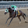 Hold the Salsa wins the 2020 Bertram F. Bongard Stakes<br /> Coglianese Photos/Chelsea Durand