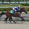 Peruvian Dancer - Maiden Win, Gulfstream Park, August 22, 2020<br /> Coglianese Photos/Lauren King