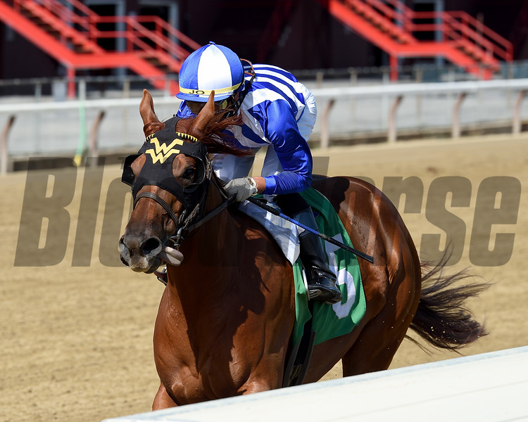 Red Ghost wins maiden special weight Sunday, August 30, 2020 at Saratoga. Photo: Coglianese Photos/Chelsea Durand