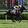 Outadore - Maiden Win, Saratoga, July 26, 2020<br /> Coglianese Photos