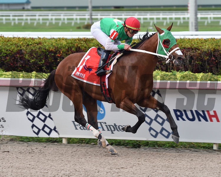 Mischevious Alex wins the 2020 Swale Stakes at Gulfstream Park<br /> Coglianese Photos/Lauren King