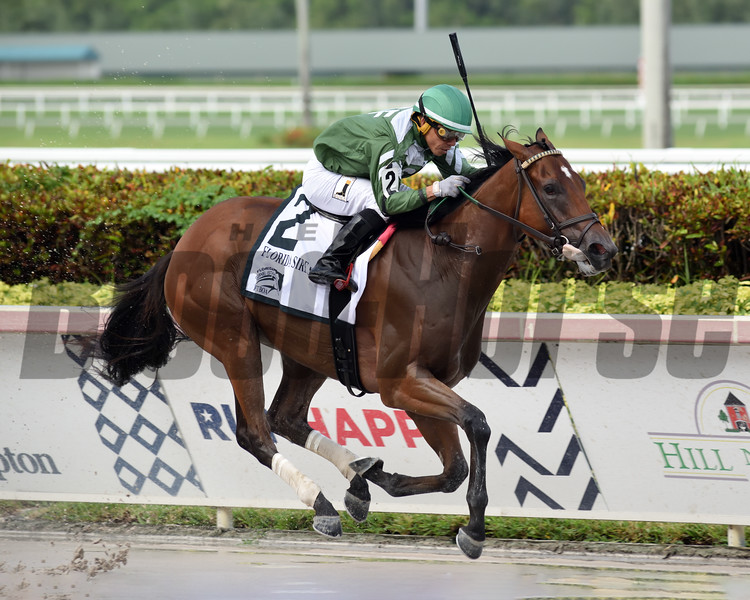 Breeze On By wins the 2020 FTBOA Florida Sire Dr. Fager Stakes at Gulfstream Park<br /> Coglianese Photos/Nicole Thomas
