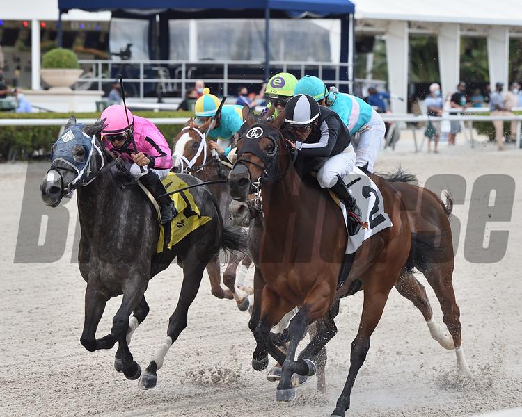 Lady's Island wins the 2020 Sugar Swirl Stakes at Gulfstream Park<br /> Coglianese Photos/Ryan Thompson