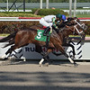 Soldado - AOC, Gulfstream Park, March 26, 2020  <br /> Coglianese Photos/Lauren King