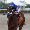 Blewitt - AOC, Gulfstream Park, April 9, 2020<br /> Coglianese Photos/Ryan Thompson