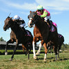 Meriwether Jessica wins the Yaddo Stakes<br /> Coglianese Photos/Charles Mann