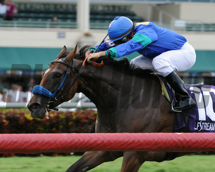 Angelica Zapata wins the 2014 Soaring Softly Stakes at Gulfstream Park.<br /> Coglianese Photos/Kenny Martin