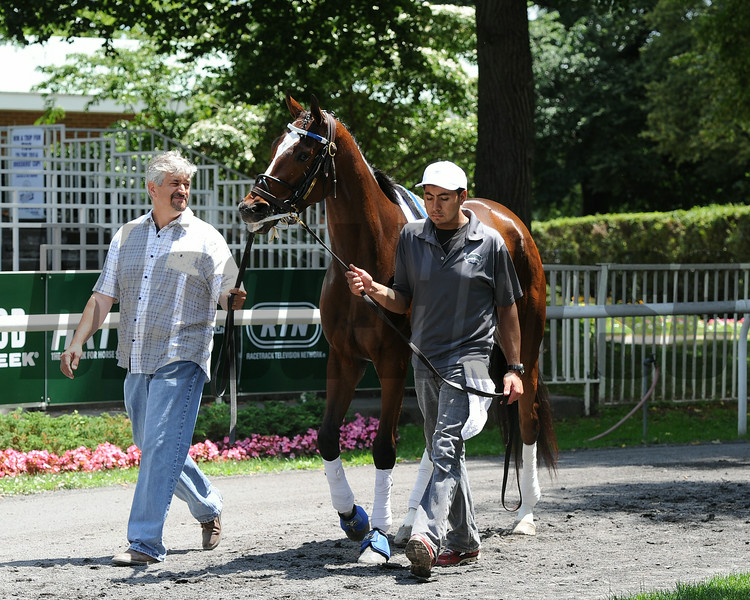 Untapable Belmont Park June 26, 2014<br /> Coglianese Photos/Susie Raisher