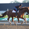 Imagining at Belmont Park May 25<br /> Coglianese Photos/Susie Raisher