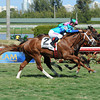 Yes I'm Lucky captures the Mr. Light Stakes at Gulfstream Park in Florida.