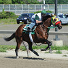 Uncle Sigh at Belmont Park 6/1/2014<br /> Coglianese Photos/Susie Raisher