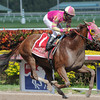 Groupie Doll wins the Hurricane Bertie Stakes 2/9/2014.<br /> Coglianese Photos