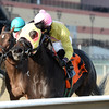 Vickis Dancer wins the New York Stallion Series 11/25/2014.<br /> Coglianese Photos