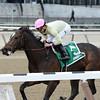 The Lewis Dinner wins the 2014 New York Stallion Series Stakes at Aqueduct.<br /> Coglianese Photos/Joe Labozzetta