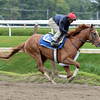 V. E. Day - Saratoga, August 15, 2014.<br /> Coglianese Photos/Susie Raisher