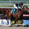 R Free Roll wins the 2014 Hollywood Beach Stakes at Gulfstream Park.<br /> Coglianese Photos/Lauren King