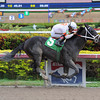 Can't Stop the Kid Maiden Win, January 4, 2014.<br /> Coglianese Photos
