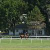 Wise Dan works at Saratoga on July 18, 2014<br /> Coglianese Photos/Susie Raisher
