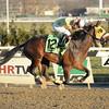 Good Luck Gus wins the Damon Runyon Stakes Dec. 14, 2014.<br /> Coglianese Photos