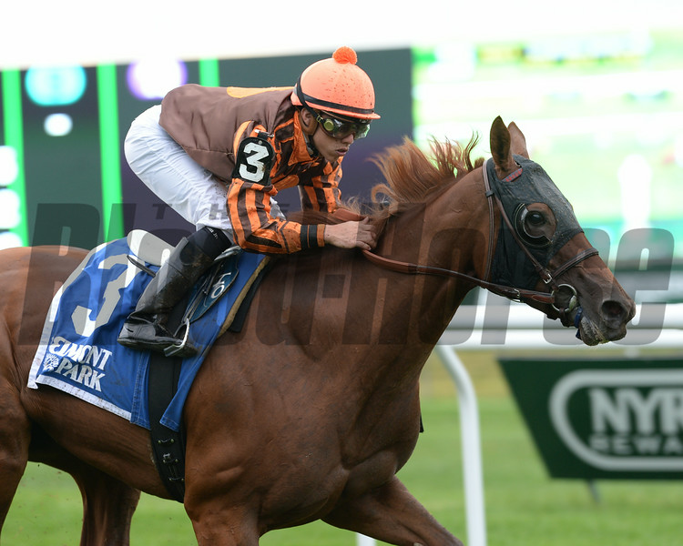 Joy wins the 2014 Perfect Sting Stakes at Belmont Park.<br /> Coglianese Photos