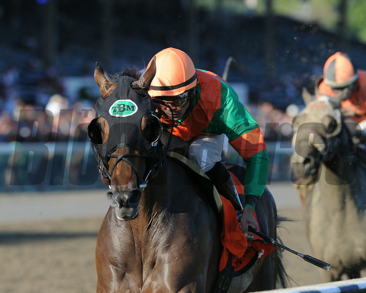 So Lonesome wins the Albany Stakes 8/24/2014.<br /> Coglianese Photos/Adam Mooshian