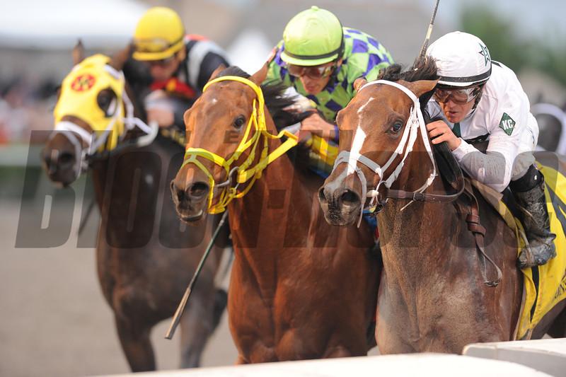 Constitution wins the 2014 Florida Derby at Gulfstream Park.<br /> Coglianese Photos/Kenny Martin