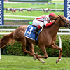 Partisan Politics wins the 2014 P. G. Johnson Stakes at Saratoga.<br /> Coglianese Photos/Chelsea Durand
