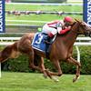Partisan Politics wins the 2014 P. G. Johnson Stakes at Saratoga.<br /> Coglianese Photos/Chelsea Durand