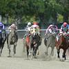 Ostrolenka wins the 2014 Sleepy Hollow Stakes at Belmont Park. <br /> Coglianese Photos
